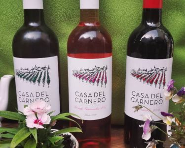 Selection of Casa Del Carnero wines